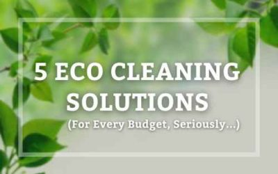 The Only 5 Eco Cleaning Solutions for Every Budget You Actually Need