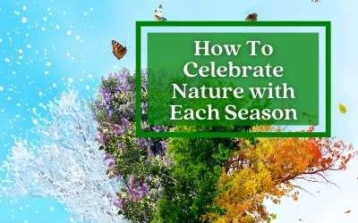 Celebrating Each Season – Seasonal Rituals and Ceremonies You Can Do At Home