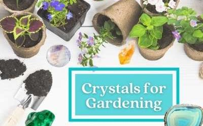 Crystals in Gardening – How to Use Crystals in Your Garden [+ 9 Crystals to Help with Growth and Reviving of Your Plants]