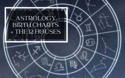 Your Zodiac Sign, 12 Houses in Astrology and Our Destiny Written in the Stars – Is It?