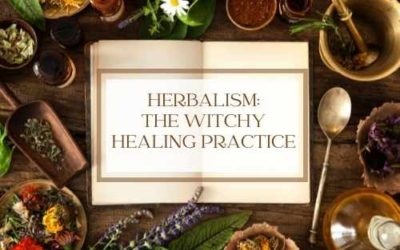 Herbalism – All the Info You Need as a New Witchy Practice and a Plant-Based Healing Method